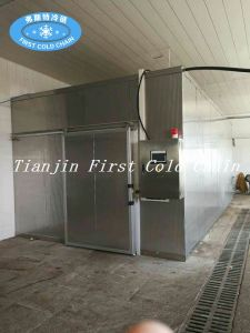 Frozen Meat Thawing Machine for Meat Seafood pictures & photos
