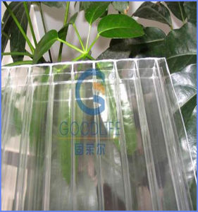 Production/Experiment /Commercial Large Small Double Color Polycarbonate Greenhouse pictures & photos