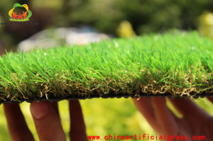 Pets Friendly Synthetic Turf Carpet with RoHS Certification pictures & photos