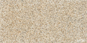 Factory Granite Stone Outdoor Ceramic Tiles for Wall (300X600mm) pictures & photos