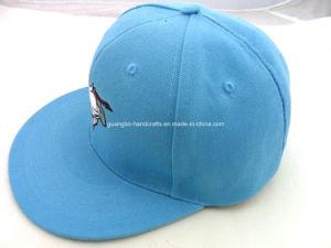 Custom Cotton Snapback Cap Hat pictures & photos