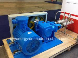 Cyyp 75 Uninterrupted Service Large Flow and High Pressure LNG Liquid Oxygen Nitrogen Argon Multiseriate Piston Pump pictures & photos