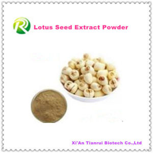 High Quality 100% Natural Plant Extract Lotus Seed Powder pictures & photos