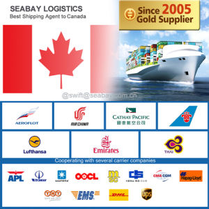 Guangzhou Air Cargo Service to Montreal pictures & photos