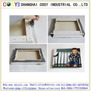 Eco Friendly Polypropylene Non-Woven Fabric pictures & photos