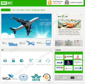 Cheapest Air Freight/Shipping/Cargo Rates China to Riyadh pictures & photos