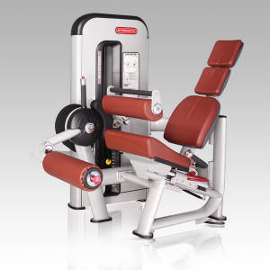 High Quality Seated Leg Curl Machine Bw-013/Fitness Equipment pictures & photos
