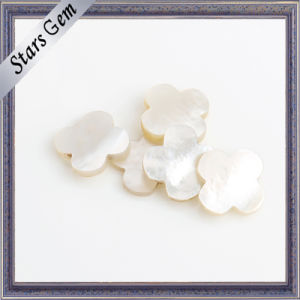 Fashion Fantastic White Natural Shell Semi Precious Stone pictures & photos