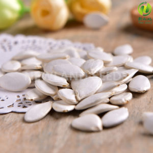 Chinese Most Popular Snow White Pumpkin Seeds to Korea