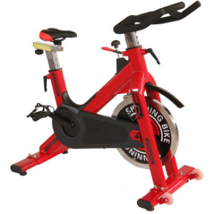 Fitness Equipment/Gym Exercise Machine for Spinning Bike (RSB-701) pictures & photos