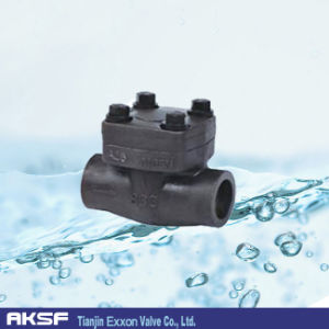API Forged /Stainless Steel/ Carbon Steel Bolted/ Check Valve pictures & photos