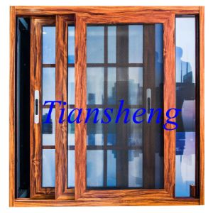 Aluminum Windows and Doors with Stainless Steel Mosquito Net pictures & photos
