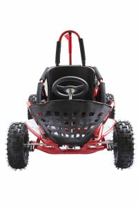 80cc Go Kart pictures & photos