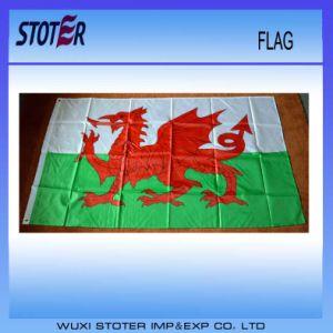 Advertising Flag, Beach Flag, Garden Flag pictures & photos
