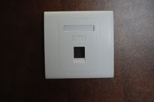 Network Faceplate 2 Ports and 1 Port in Wall Panel (HSC-2056612-1) pictures & photos