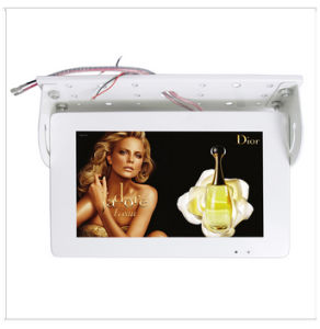 19 Inch LCD Bus Monitor with AV or VGA Input pictures & photos