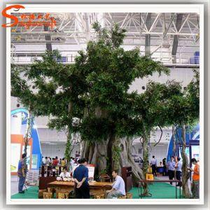 Indoor Decoration Fiberglass Large Artificial Banyan Tree pictures & photos