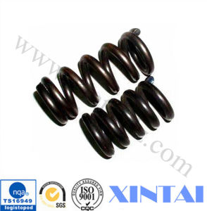 Custom Steel Coil Compression Spring pictures & photos