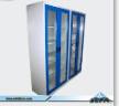 Reagent Storage Cabinet (Beta-Sc-s-04)