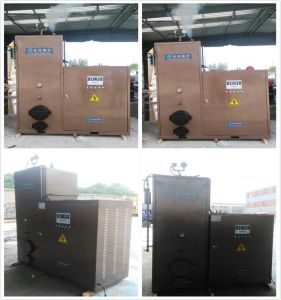 Biomass Steam Boiler (LSG0.2-0.3 series) pictures & photos