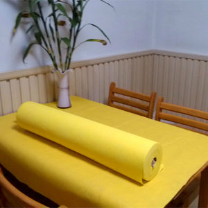 PP Nonwoven Fabric 20 X 50 Mt pictures & photos
