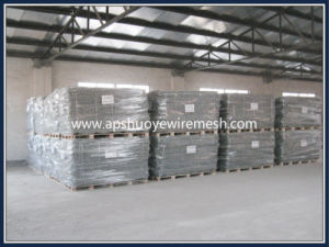 Electro Galvanized Hexagonal Wire Mesh From China Factory pictures & photos