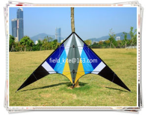 Promotional Stunt Flying Kite From Weifang Kite Factory pictures & photos
