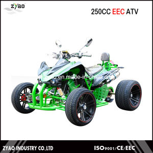 2016 China EEC ATV /Cheap China Quad Buggy Road Racer pictures & photos
