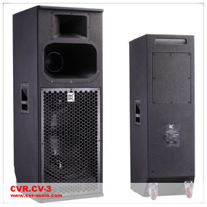 Three Way Big Power Speaker Church Sound System pictures & photos