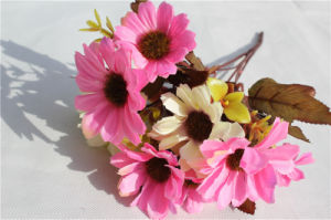 Cheap Pink Artificial Flower Daisy Artificial Flowers pictures & photos