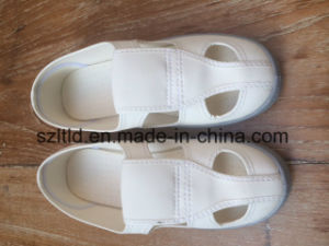 ESD Butterfly Shoes pictures & photos