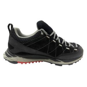 Popular Type Running Shoes for Men