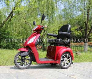 Ce Approved Three Wheel Handicapped Bike pictures & photos