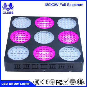 LED Grow Light 150W Full Spectrum UV IR Plant Grow Lamp for Indoor Greenhouse Garden Plants Veg and Flowering pictures & photos
