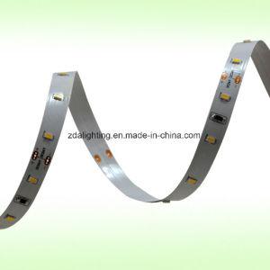 12V/24V 120LEDs/M SMD3014 Cool White LED Ribbon Strip pictures & photos