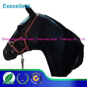 PP Material and Synthetic Saddle Style Colorful Horse Halter pictures & photos