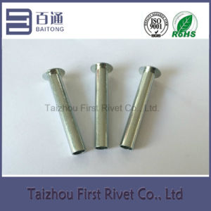6.3X42.7mm White Zinc Color Oval Head Semi Tubular Steel Rivet pictures & photos