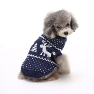 New Design Small Dog Sweater Knitting Pattern Factory pictures & photos