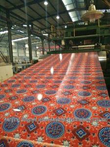 Color Coated Aluminium Coil/Aluminium Steel Coils pictures & photos