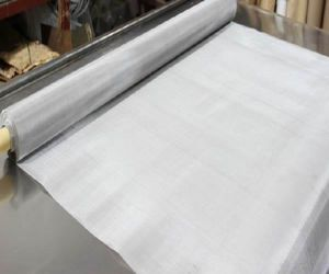 Stainless Steel Wire Mesh/Ss Wire Mesh/Filter Cloth pictures & photos