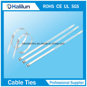 Staineless Steel Ladder Single Barb Lock Cable Tie pictures & photos