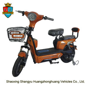 Custom Colors Motor 350W 48V 12ah E Bike