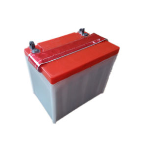 Hot Sale Starting Lead Acid Lawn Mower Battery 12n24-3A 12V24ah pictures & photos