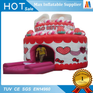 Inflatable Birthday Cake Playhouse Bouncer for Kids pictures & photos