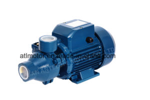 Popular Qb Series Peripheral Water Pump pictures & photos
