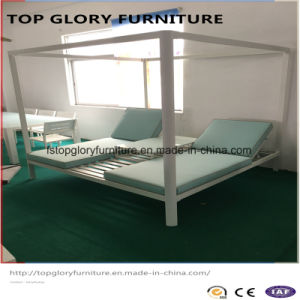 Top Quality New Design Outdoor Double Patio Sun Lounge Aluminum Lounge (TG-6001) pictures & photos