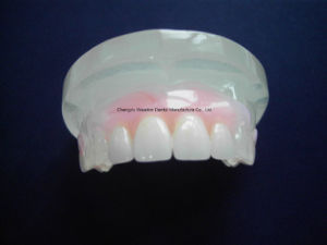 Clear Felixble Denture for Dental Lab From Chinese Dental Lab pictures & photos