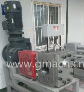 High Pressure Melt Gear Pump for Rubber pictures & photos