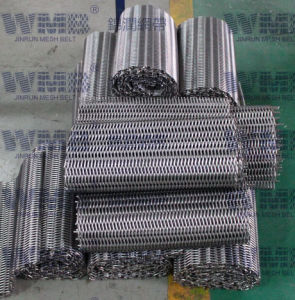 Double Balanced Wire Mesh Belt pictures & photos