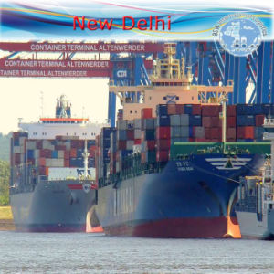Freight Shipping LCL to New Delhi by Carrier Oocl pictures & photos